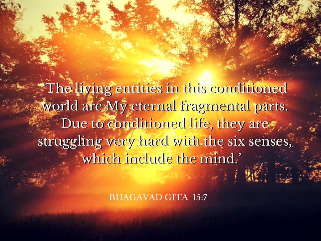 Yoga ~ Harmony of Body, Mind and Spirit?